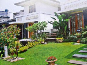 Ragam Inspirasi Untuk Desain Taman Depan Rumah yang Bisa Anda Coba!